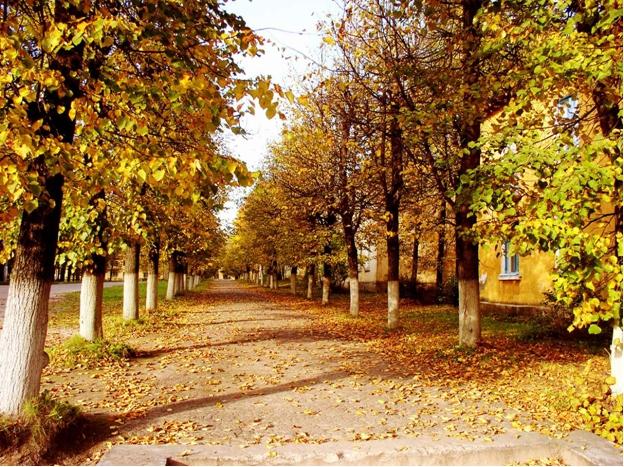 Аллея Осень